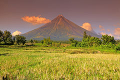 Philippines - Mayon Volcano Royalty Free Stock Image